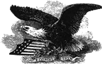 Image of the American Eagle